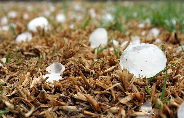 Hail Damage in Minnesota