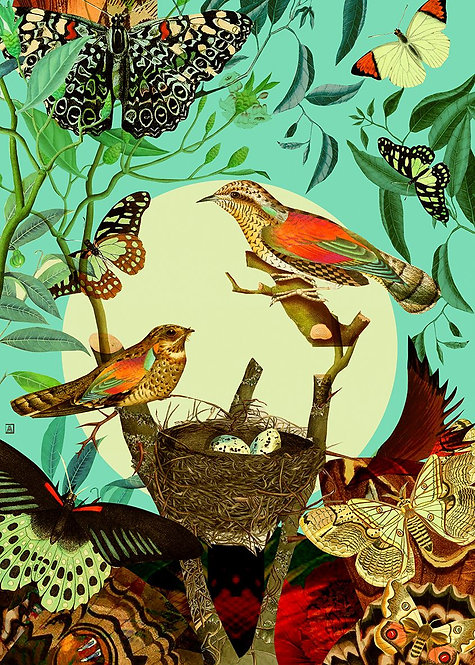 Botanical composition with birds and moths (DAY)