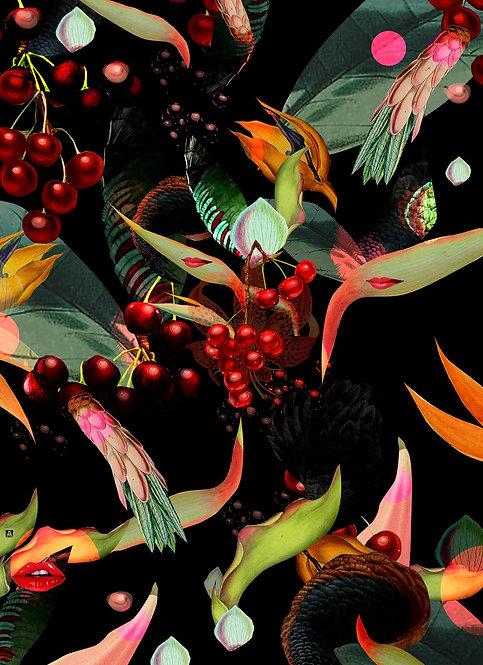 Cherries sweating in the night