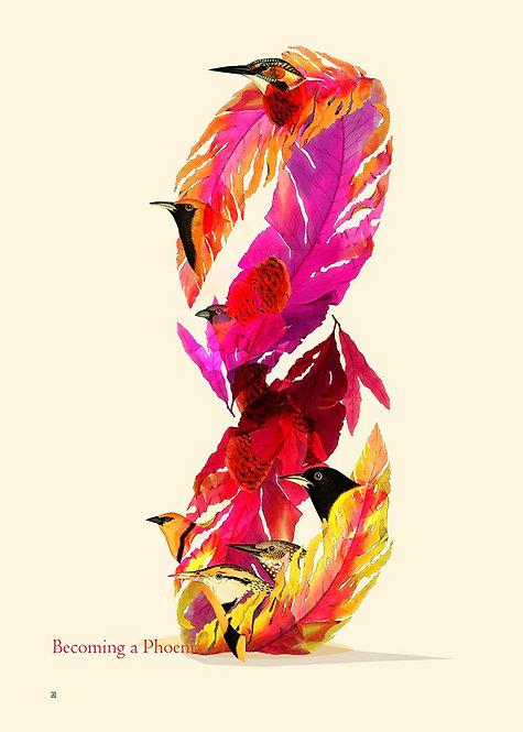 Becoming a Phoenix