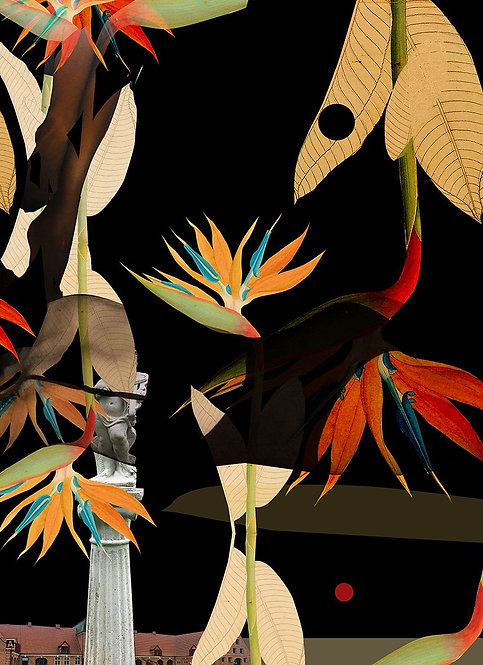 Botanical composition with Crane flower