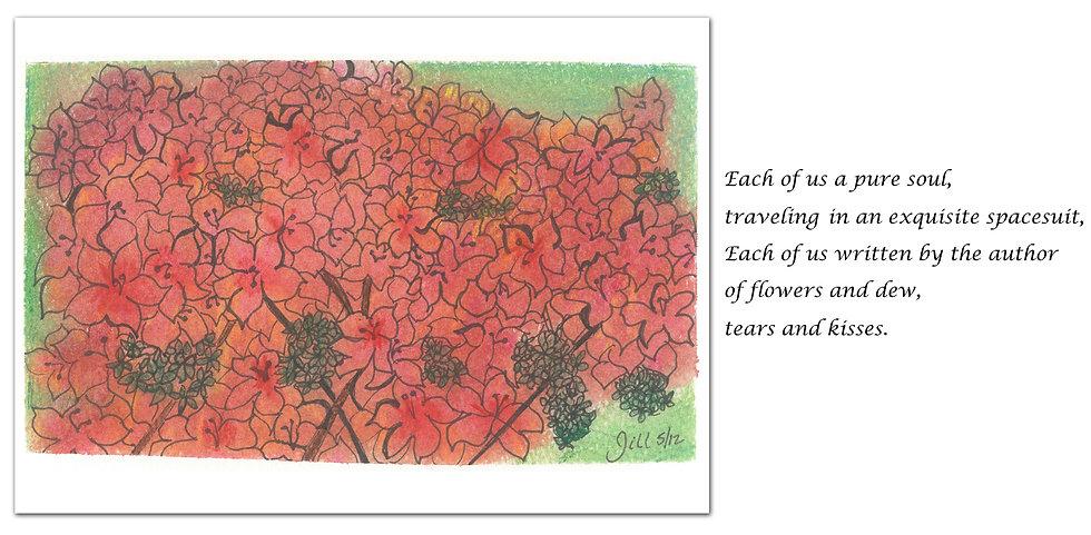 Greeting Card #4