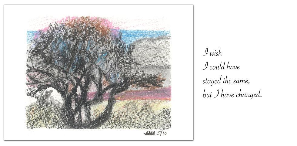 Greeting Card #31