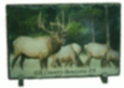 Elk Slat.jpg
