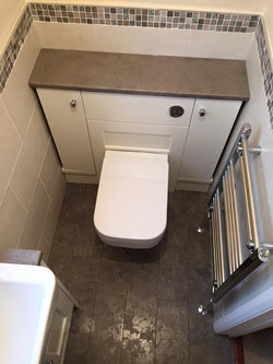 Toilet and towel warmer