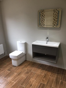 Modern Toilet and sink combo
