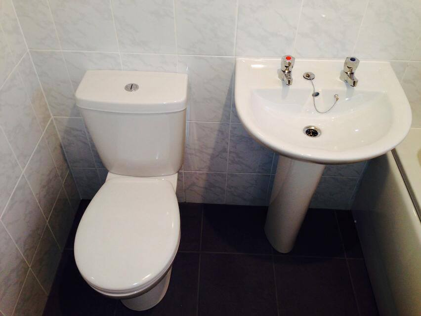 Neat and tidy toilet and sink combo