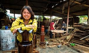 Tran - Carpenter - Vietnam.png