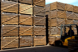 Storing in wooden boxes
