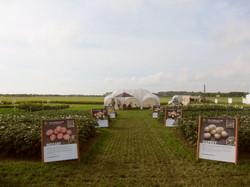 Agrovision fair