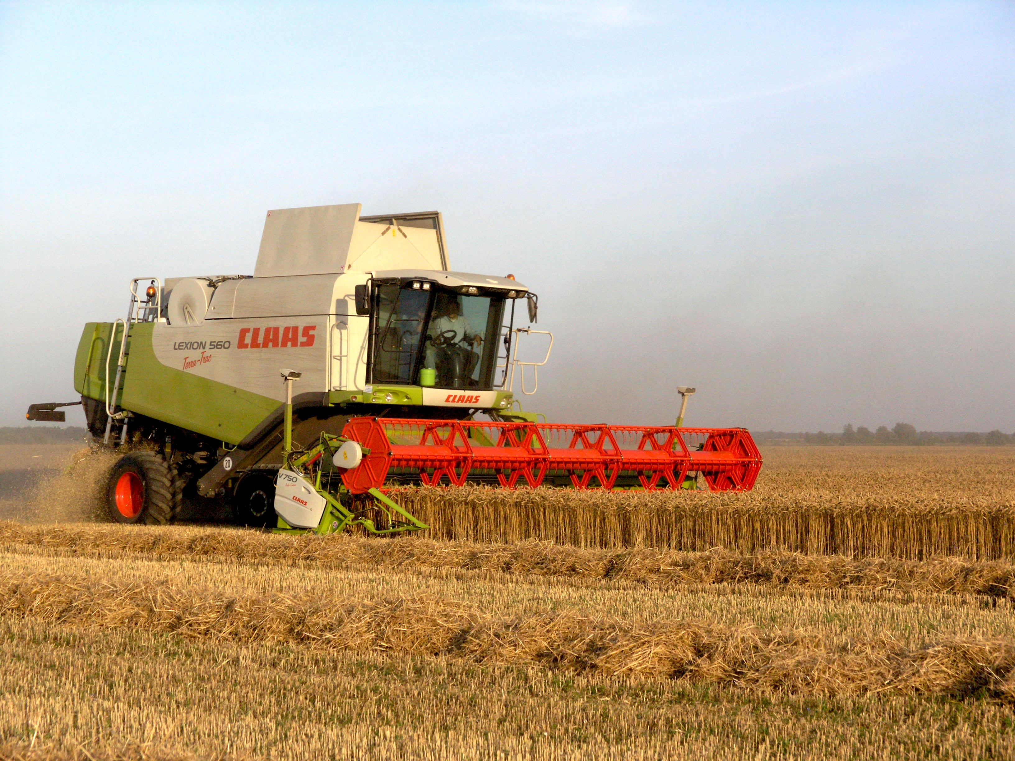 уборка уразая пшеницы