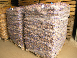net bags 25kg potatoes