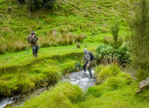 Palmerston North Fly Fishing