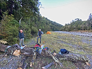 North island Fly Fishing