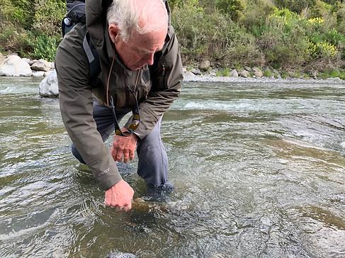 NZ fly fishing
