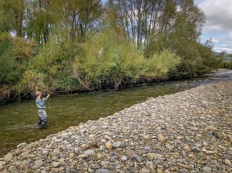 Manawatu Fly Fishing