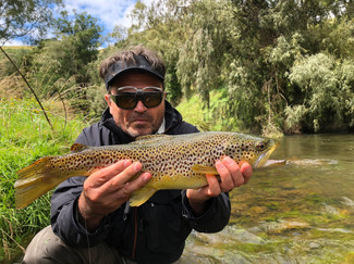 New Zealand Brown Trout Guide