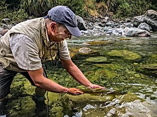 Taranaki Fly Fishig Guides