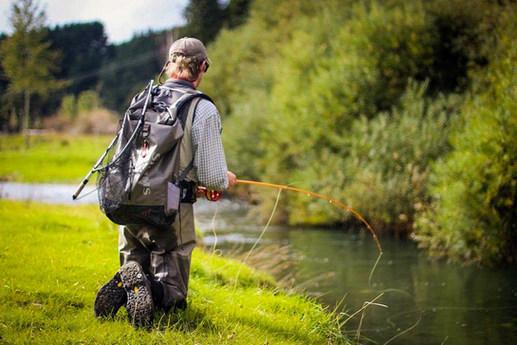 Wellington Fishing Guides