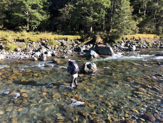 New Zealand Backcountry Fly Fishing Guide