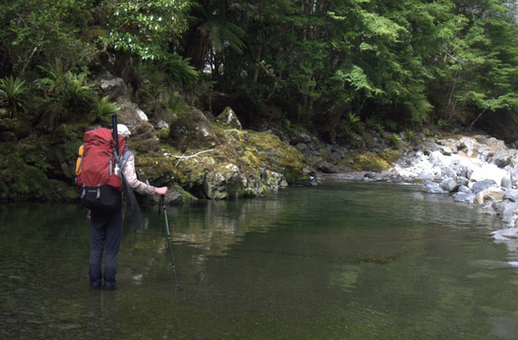 New Zealand Fly Fishing Guide