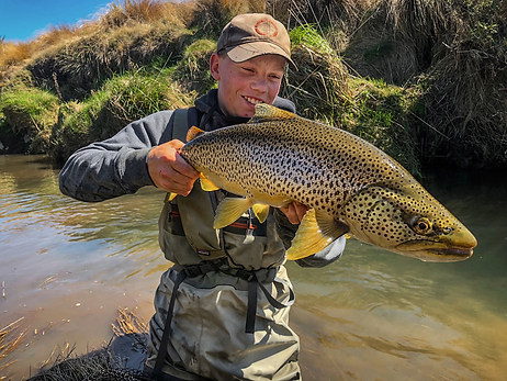 New Zealand Brown Trout Fishing Guide