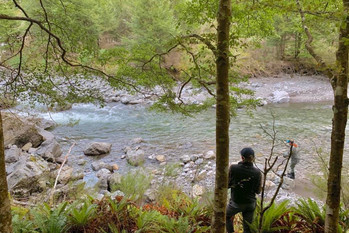 North Island Fly Fishing Guides