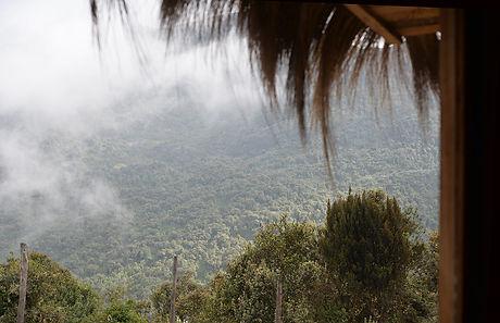 paisaje 3.jpg