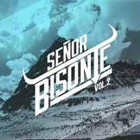 SrBisonte2.jpg
