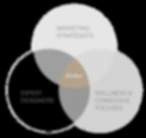 Website-Design-Marketing-Experts-VEN.png