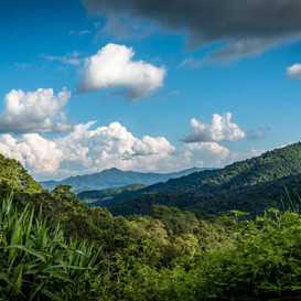 National Parks : Where can I get out in nature in Thailand?