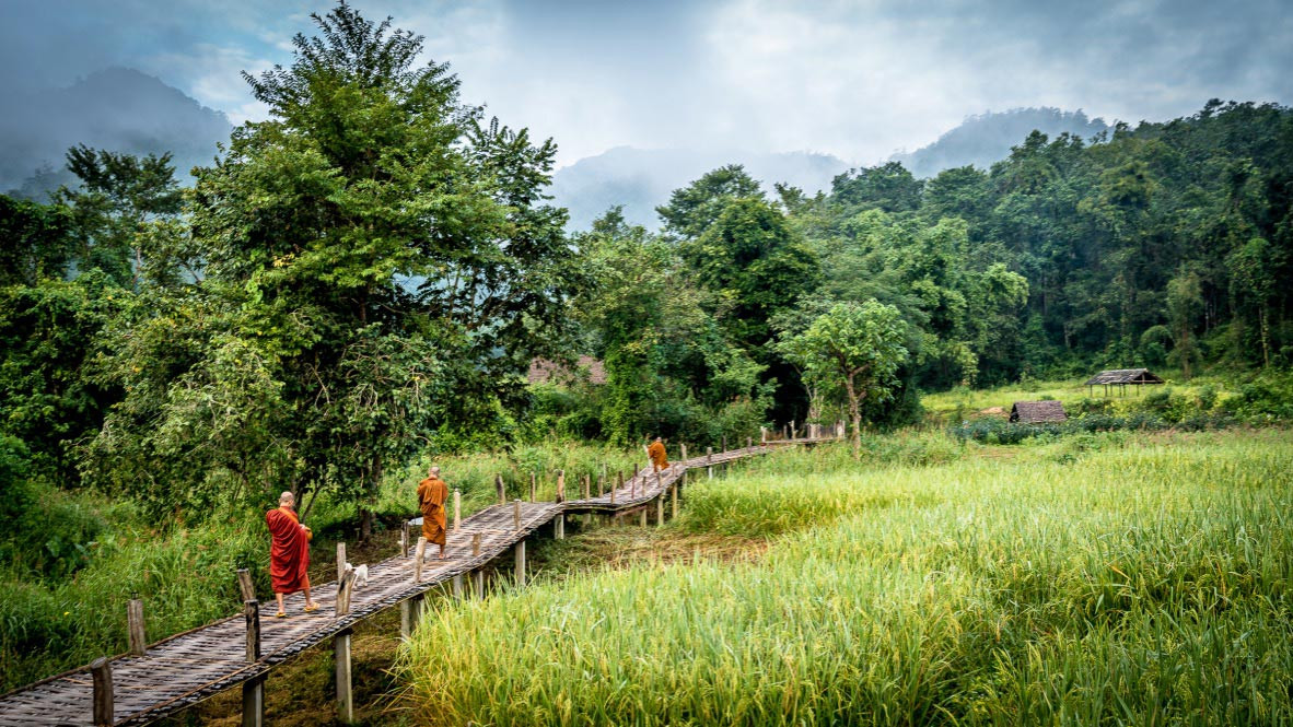 Buddhism : How does Buddhism play out in Thailand?