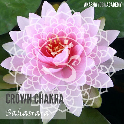 Sahasrara-chakra.jpg