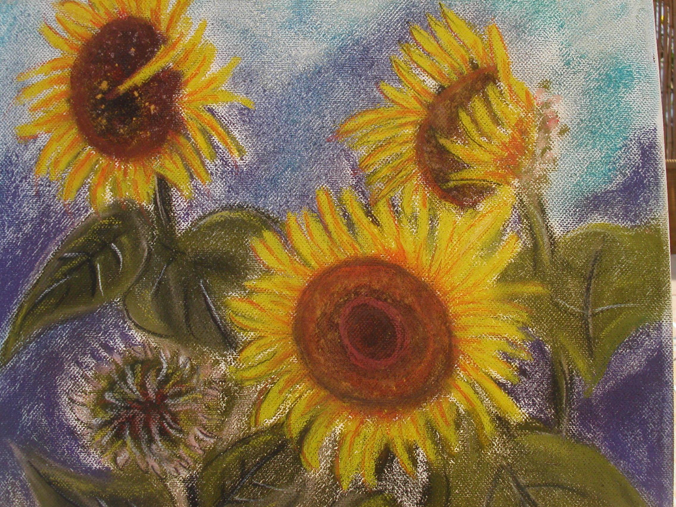 Stillleben Sonnenblumen