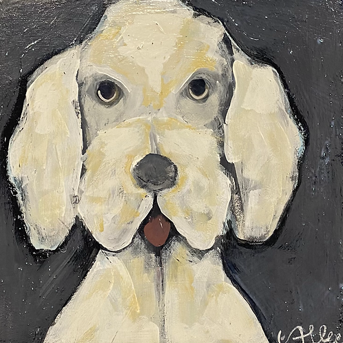 Lucky Dog  10x10x3  FREE SHIPPING