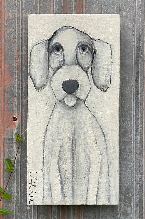 Sweet Face  10x20  FREE SHIPPING