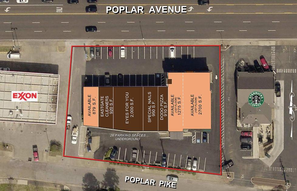 6155 Poplar Site Plan.jpg