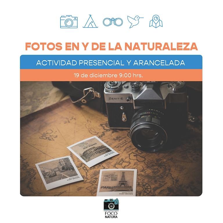 Fotografía Nocturna con Foco Natura - 20% Descuento Miembros del club_de.la.tierra