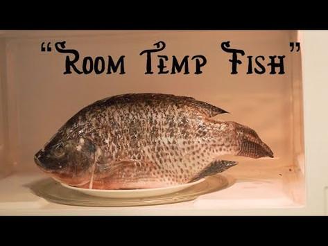 """(1029) ScooterFarm   """"Room Temp Fish"""""""