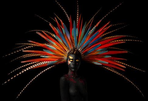 Gallactic Maya