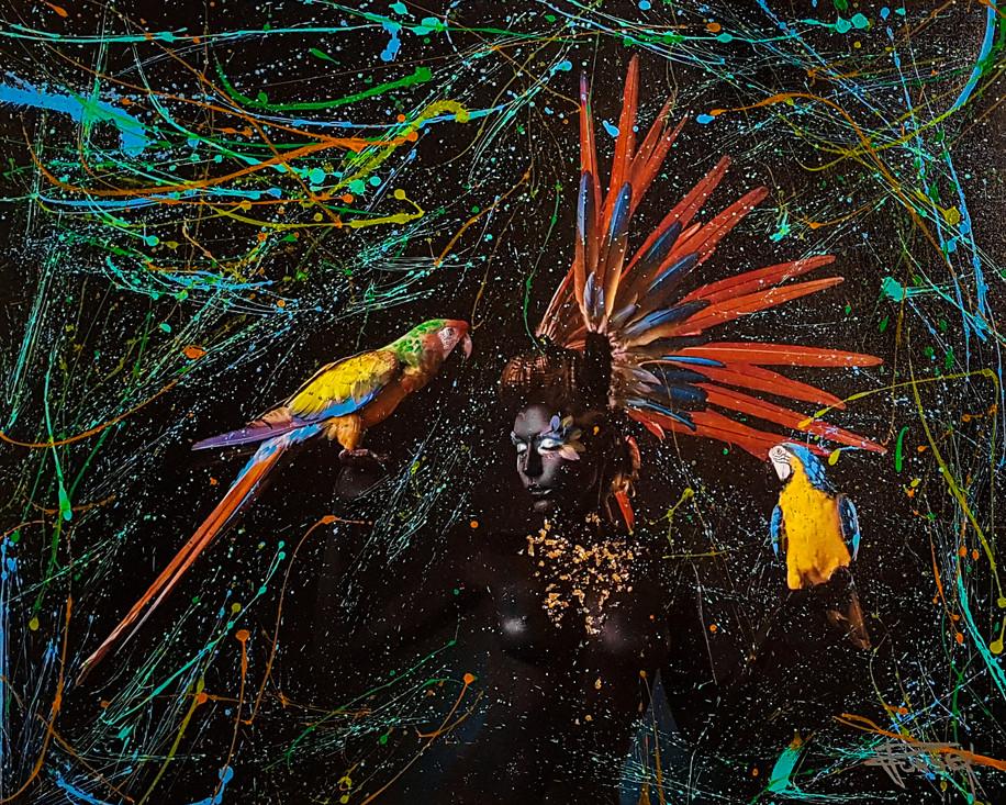 Trio Macaw