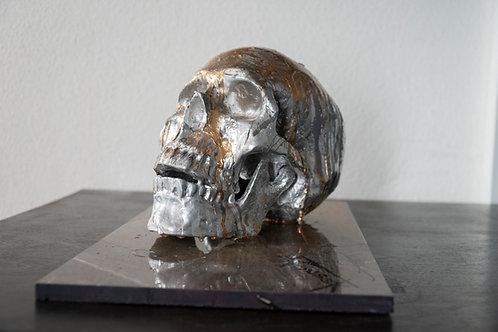 Silver Skull 2