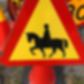 varingsskylt - häst.jpg