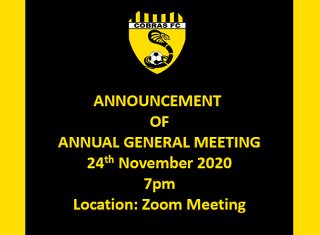 Please register to attend Cobras 2020 AGM