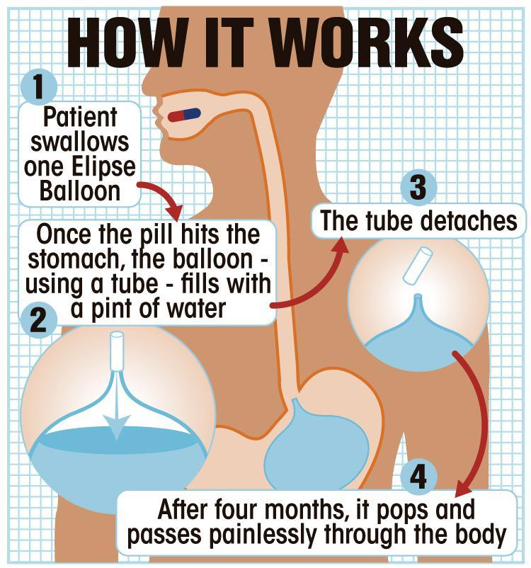 Dr b diet plan