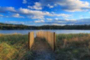 Ludlow Fence-7829.jpg