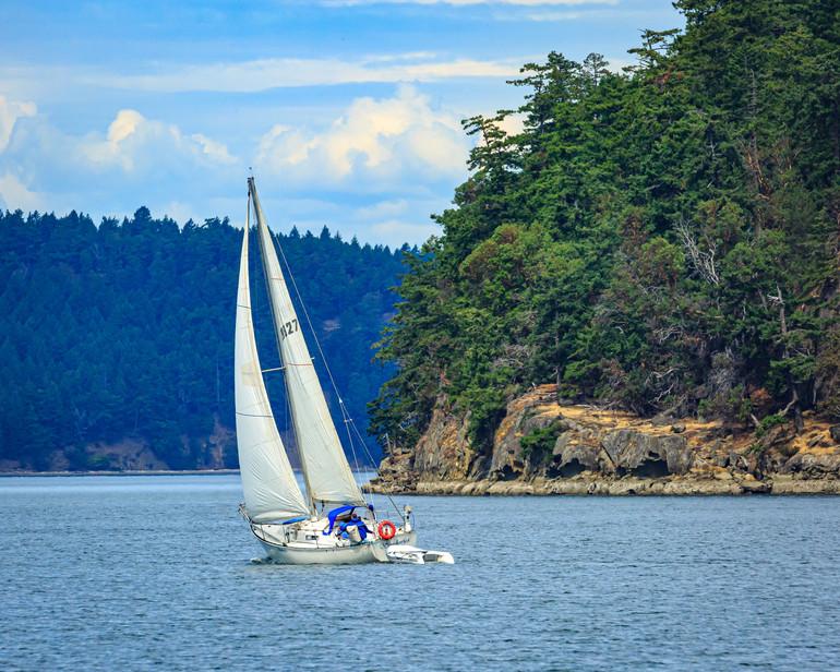 sailboat_ss-1310.jpg