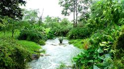 natural landscape.JPG