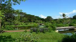 overall lake.JPG