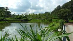 lake view III.JPG